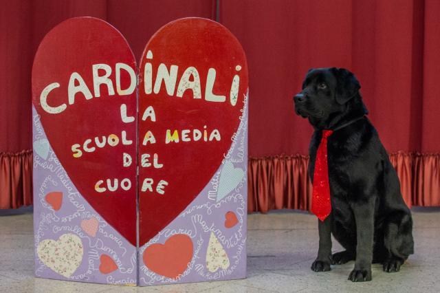 """Pet Therapy alla """"C.Cardinali"""" con Ugo"""